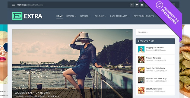 Download Free Extra v2 0 1 – The Ultimate Magazine WordPress